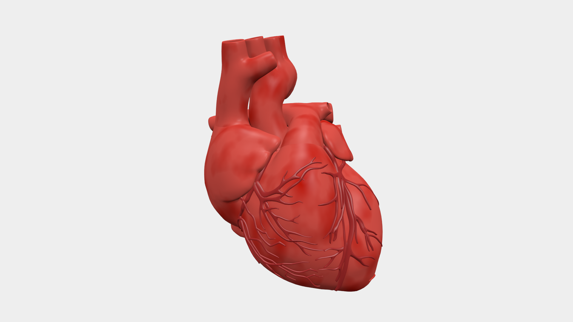 Animated human heart - photo#24